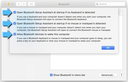 Allow Bluetooth to Wake Device
